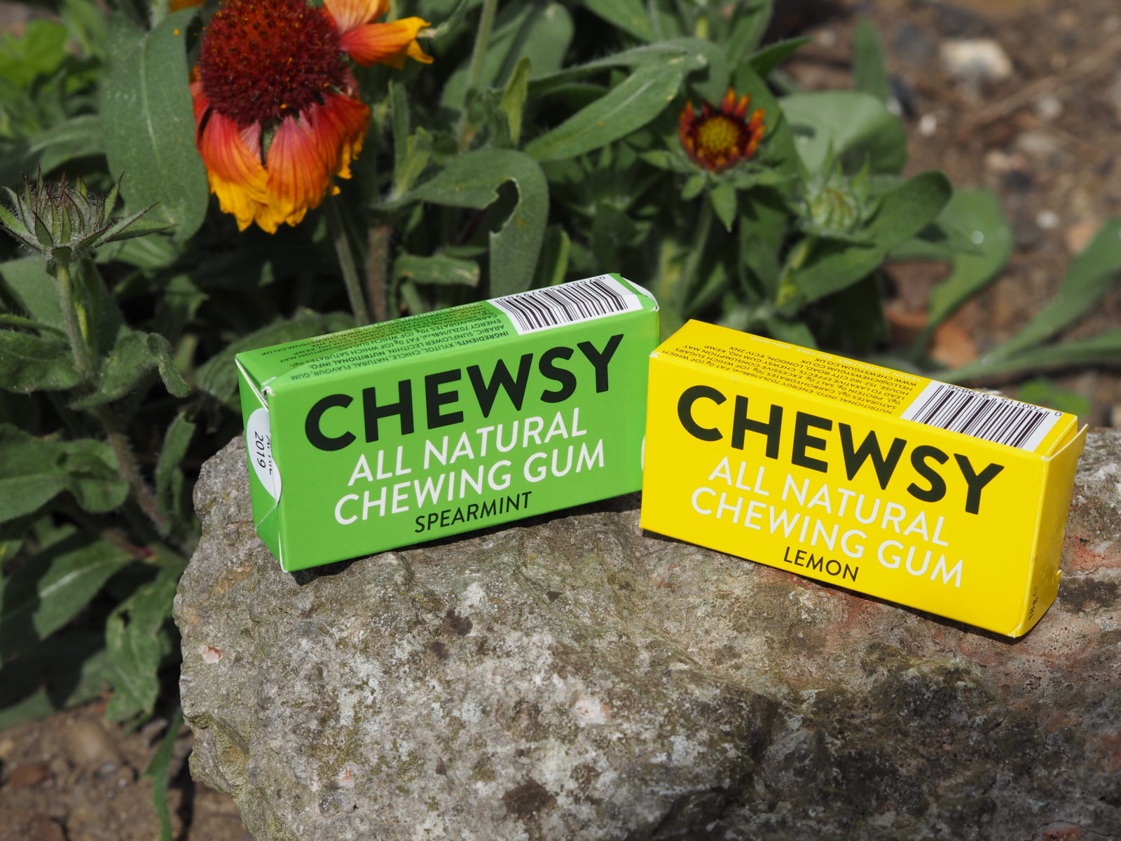 chewsy spearmint and lemon chewing gum